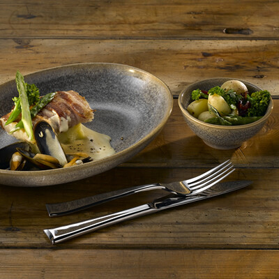 Dudson Evolution Granite