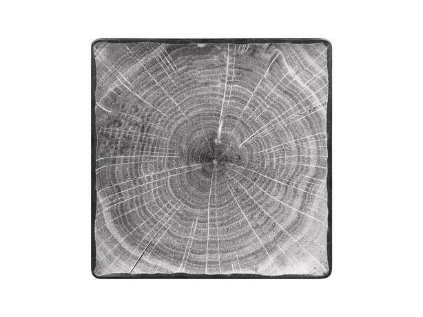 RAK Woodart Beech Grey bord vierkant 30 cm