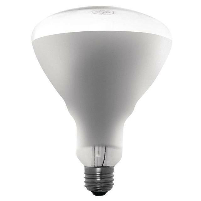 Buffalo warmtelamp ES 250 W wit licht